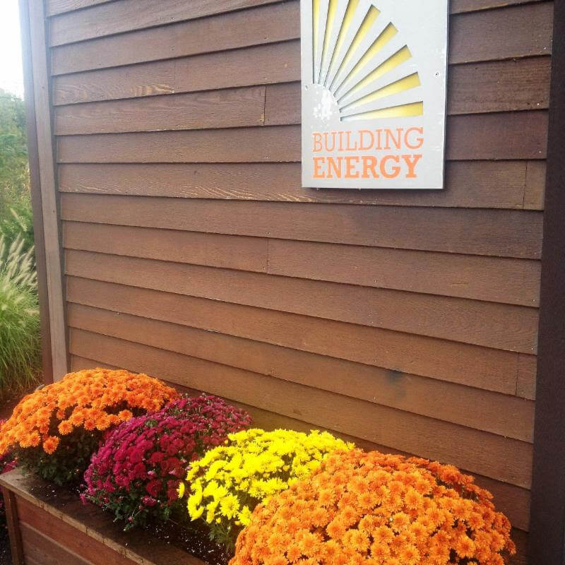 Fall mums outside of Building Energy